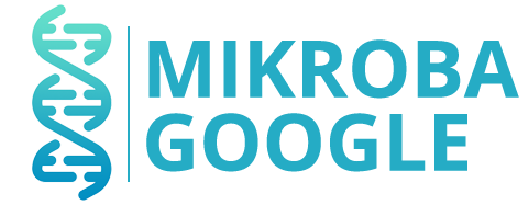 Pusat Penjualan Resmi Pupuk Mikroba Google Bio P2000Z